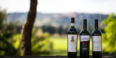 top-5-vinuri-dinbasarabia